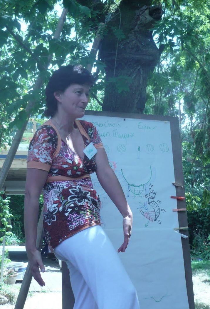 formation enseigner le chant prénatal - cours d'anatomie